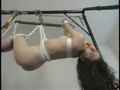 Helpless young thing hung from a pole.