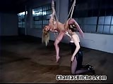 Rope tied blonde learning discipline in bondage