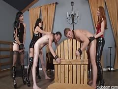 Three strapon dominatrix and two male slaves