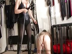 Mistress Alexandra ball busting session