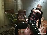 Helpless bondage bald man dominated in the dungeon