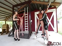 Slave's punishment day